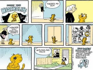 How to score Heathcliff comics for weirdness.